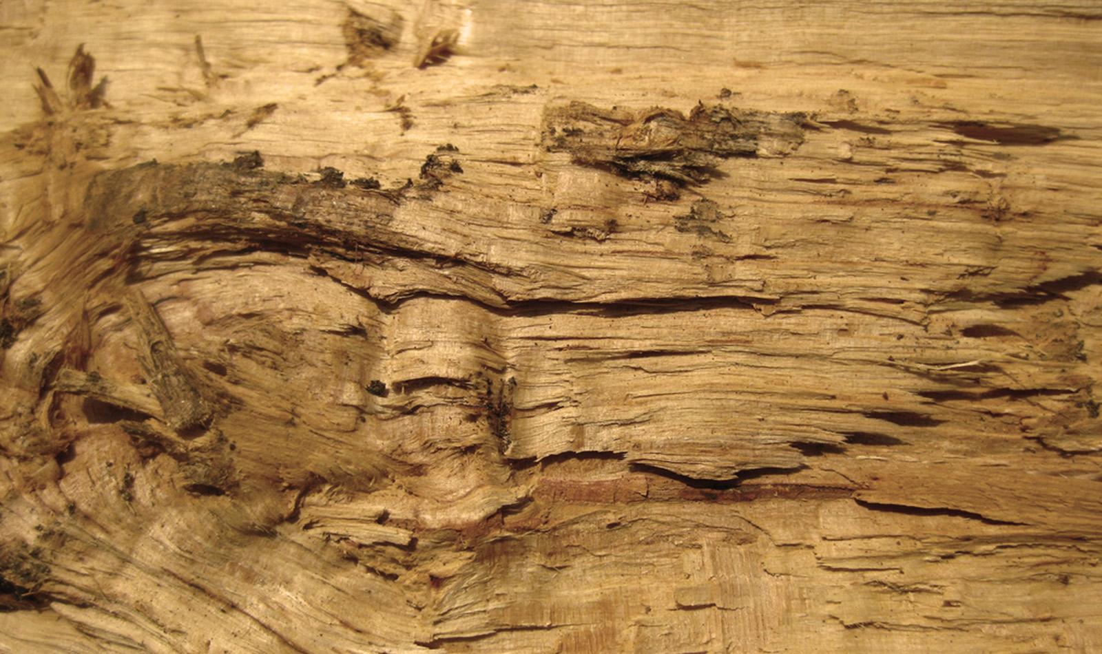 Monica cintra blog archive equil brio entre o r stico for Papel de pared rustico